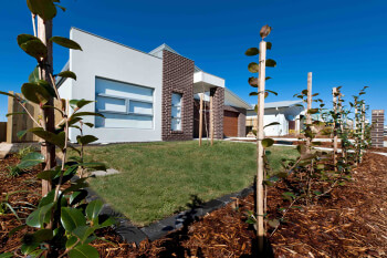 residential-landscaping-Forde photo